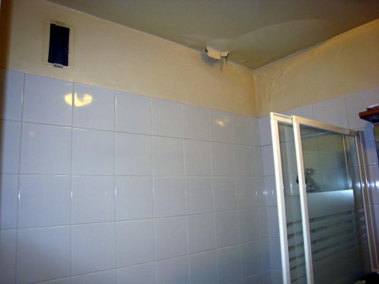 Peinture etanche plafond salle de bain for Peinture pour plafond sale